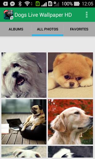 Dogs Live Wallpaper HD