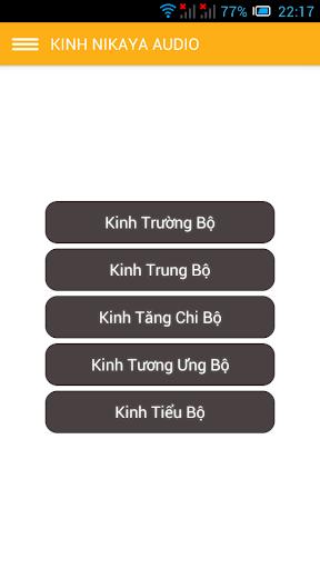 Nikaya Audio Dai Tang Kinh VN