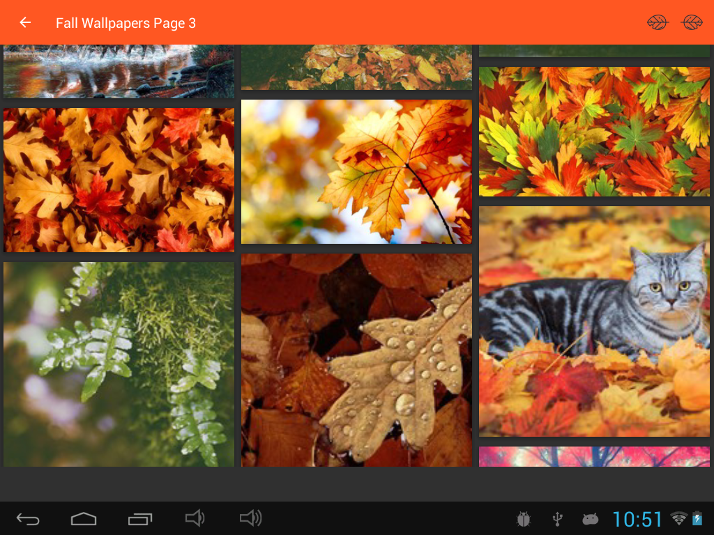 fall wallpapers android apps on google play