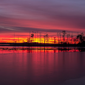Sunset over blackwater by Paul Glinowiecki - Landscapes Sunsets & Sunrises ( water, nature, colors, sunset, landscape,  )