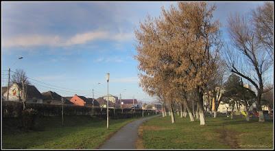 Photo: Calea Victoriei, alee Mr.1  - 2017.12.29
