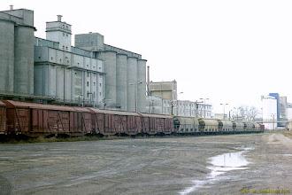 Photo: Bocznica Zakładów Tłuszczowych {Kruszwica; 2001-11-24}