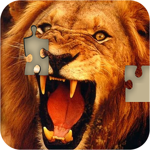 Jigsaw Puzzle - jigsaw collection photos free (game)