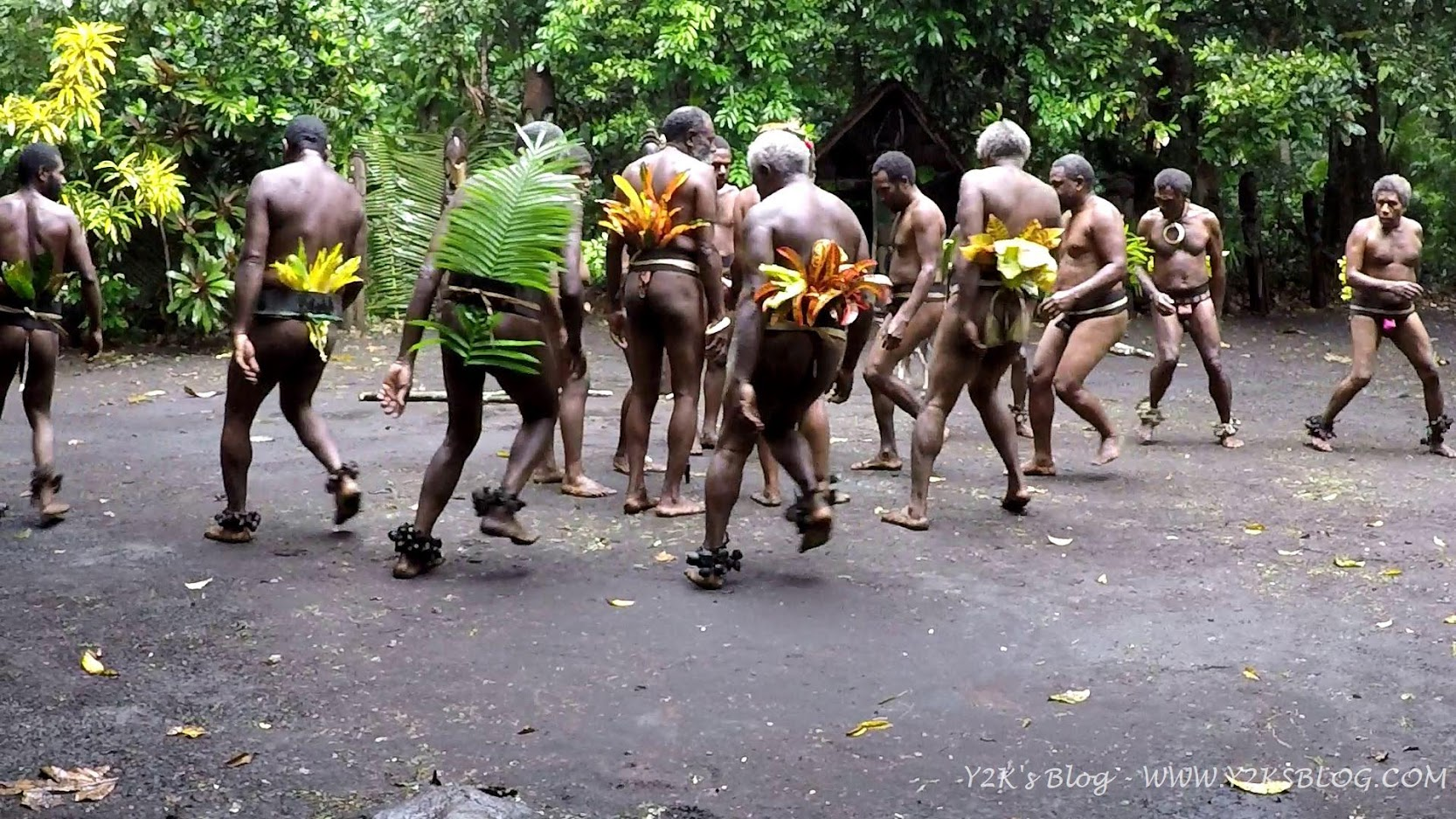 Danze tradizionali - Ambrym