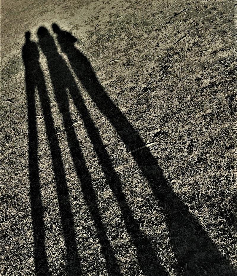 Giochi d'ombra di Ruggero