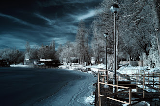 Photo: Winter IR. A walk in the park