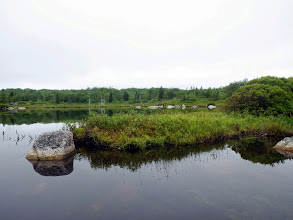 """Photo: These little islands in the southern portion of Cranberry Lake are important as nesting grounds for loons, as they lack the predators on the mainland and larger islands. There has been a pair of loons on Cranberry Lake for many years. On this day I heard one of them, which was reassuring, but I haven't seen """"the family"""" yet (as I did last year)... Loons are threatened by mercury in this part of the province."""