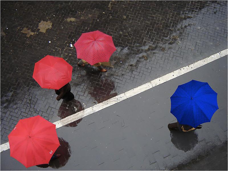 Piove sui passanti di renzodid