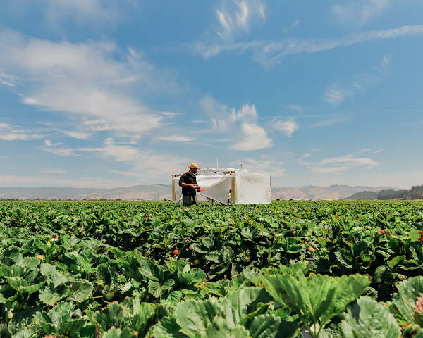 Entering the era of computational agriculture