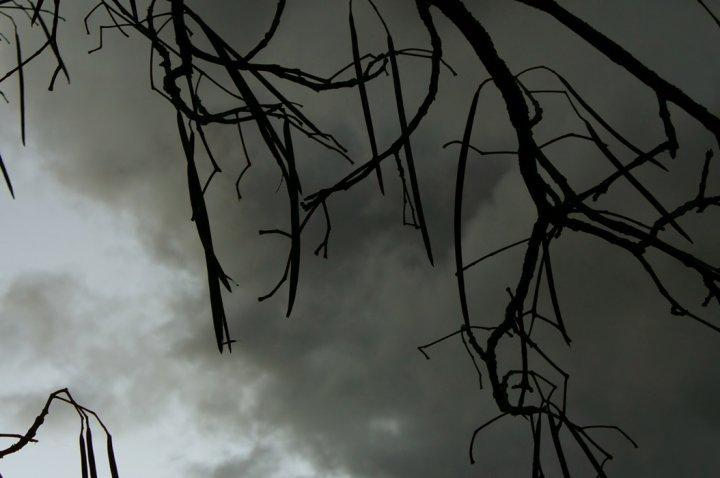 Darkness di cappi89