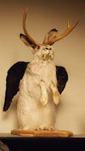 Photo: WOLPERTINGER! (If you can see this, you're drunk)