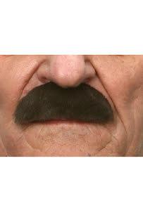 Mustasch Buskig, brun