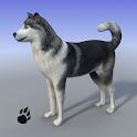 Snow Dog Survival Simulator icon