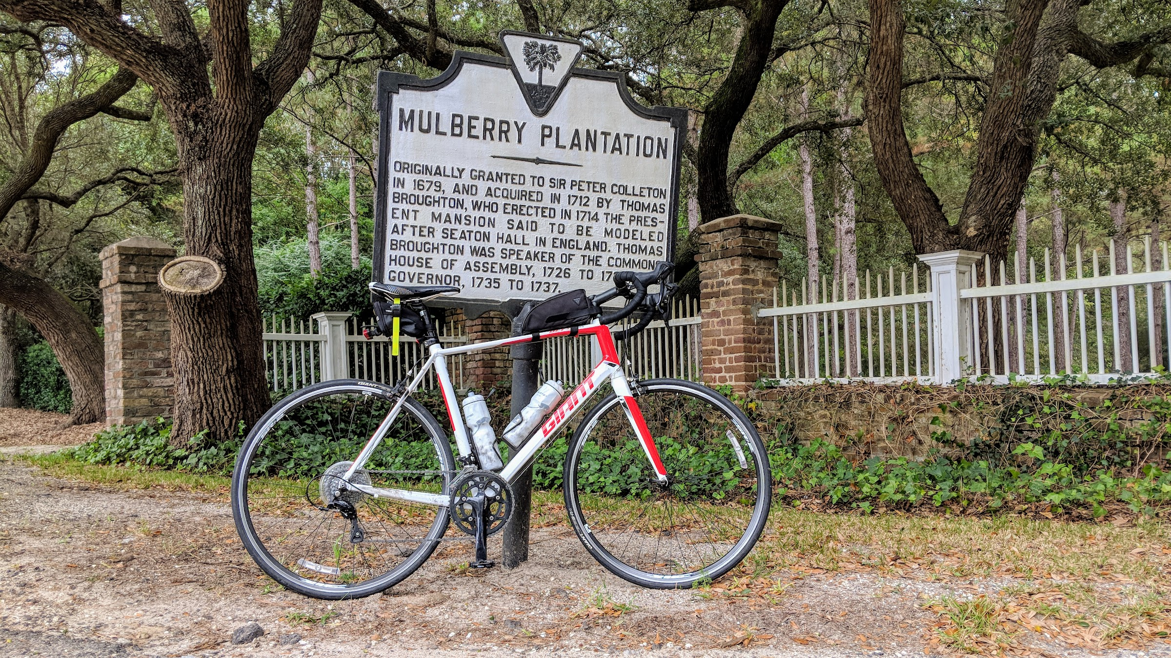Bicycle Mulberry Plantation
