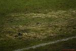 """🎥 KV Kortrijk geeft Van den Brom lik op stuk met erbarmelijk veld: """"Dat is manifest onjuist"""""""