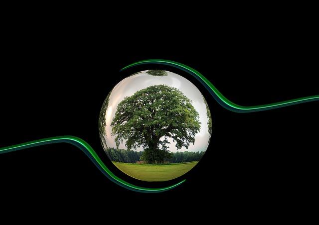 ecology-450591_640.jpg