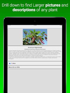 House Plants Dictionary screenshot