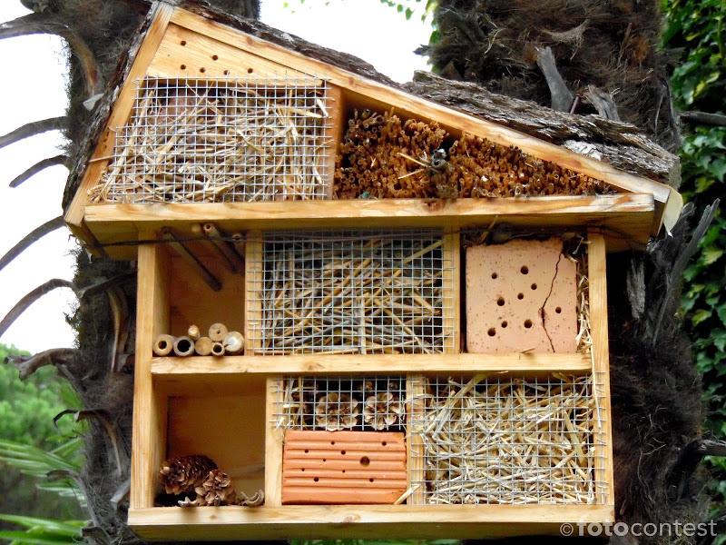 Casa per insetti di joysphoto