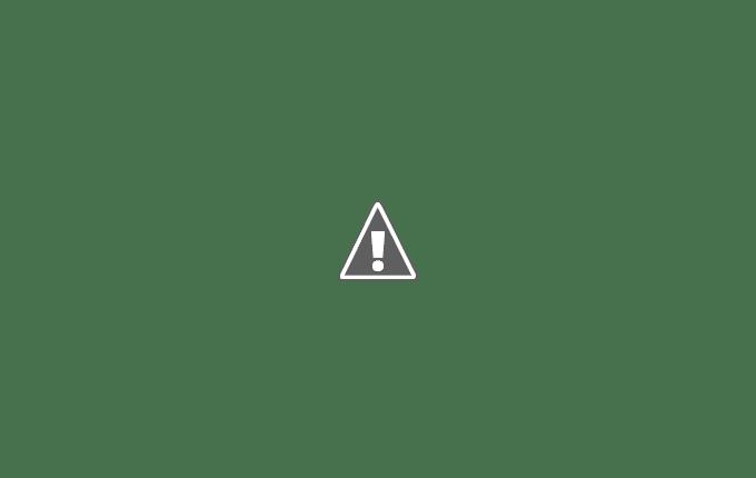 阿里山櫻花季郵局