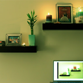 Life in Green by Denise Zimmerman - Artistic Objects Other Objects (  )