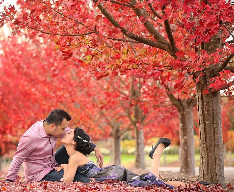 Autumn romance by Leong Ong - Wedding Bride & Groom ( pre wedding, happiness, photography,  )