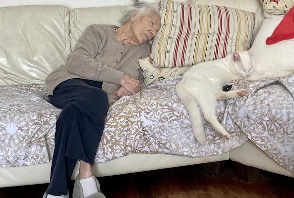 si ripiega la memoria ombrosa/ d'ogni domanda io voglio riposarmi...(E.Morante) di Alice1