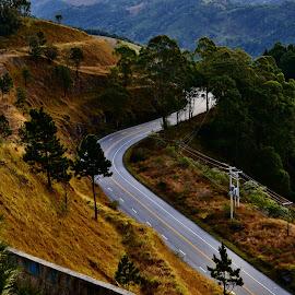 Campos do Jordão SP Brazil  by Marcello Toldi - Transportation Roads