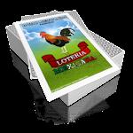 Baraja de Lotería Mexicana Icon