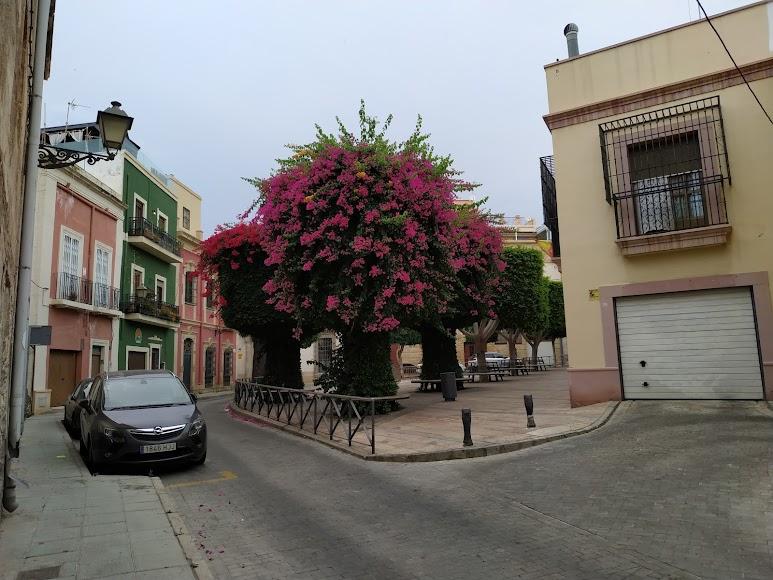 Plaza Campoamor de la capital