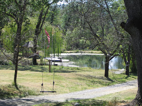 Photo: Yoga Farm, CA - view from swing