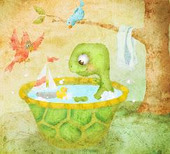 Photo: Turtle's bath.
