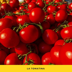 La Tomatina Festival in Spain | Krys Kolumbus Travel Blog