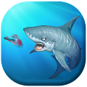 Feed Hungry Fish 3D icon
