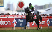 Winner THE CONGLOMERATE (AUS) (Jockey) Piere Strydom (Trainer) Joey Ramsden during the 2016 Vodacom Durban July at Greyville Racecourse on July 02, 2016 in Durban, South Africa