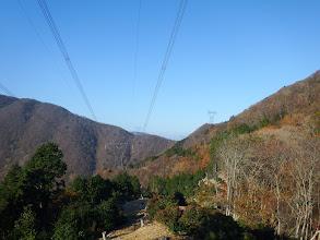 電線下の伐採地