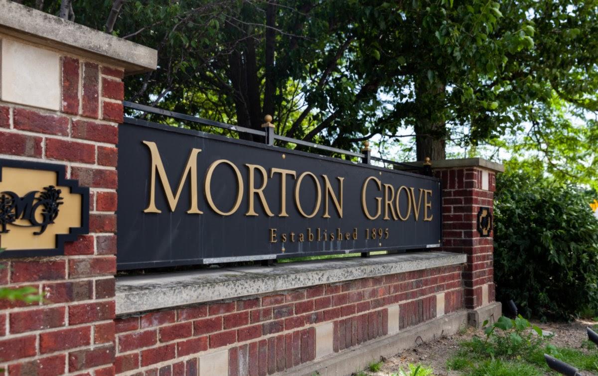 Morton Grove, IL-HandyManny Custom Window Well Covers