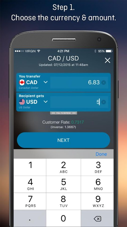 Forex Money Transfer- screenshot