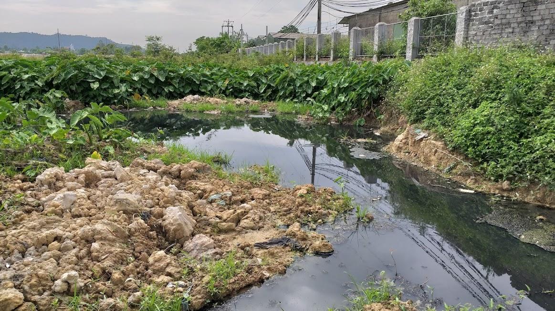 Nước thải đọng lại phía sau Nhà máy EM - Tech