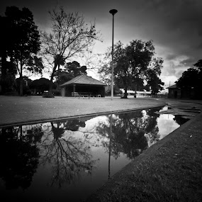 After The Rain by Katherine Winning - City,  Street & Park  City Parks ( park, rainy, puddles, black & white, dramatic, trees, reflections )