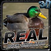 Real Duck Simulator