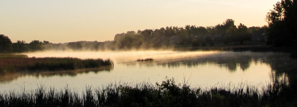 Photo: Early morning mist