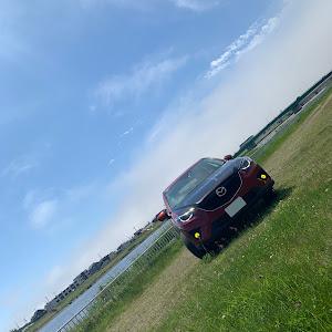 CX-5 KE2AW 平成24年車 XD Lパッケージのカスタム事例画像 たくさんさんの2019年06月19日10:40の投稿