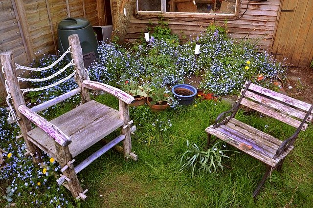 Two rustic old wooden chairs set in a wild garden of forget me knots flowers and long grasses.