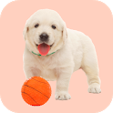 🐶 Squeaky Toy Sounds icon
