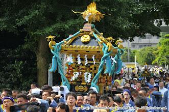 Photo: 【平成24年(2012) 本宮】  亀ヶ池八幡宮に到着する大人神輿・小人神輿。