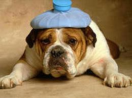 Другие причины сильной головной боли