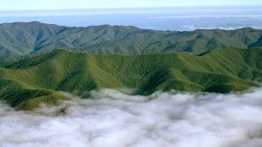 Great Smoky Mountains thumbnail