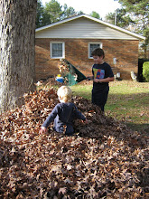 Photo: Raking.  Oops this was last week of Nov.  Oh well.