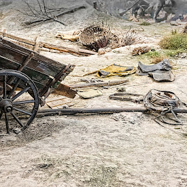 Abandoned Cart by Richard Michael Lingo - Artistic Objects Other Objects ( artistic objects, field, pleven, bulgaria, cart )