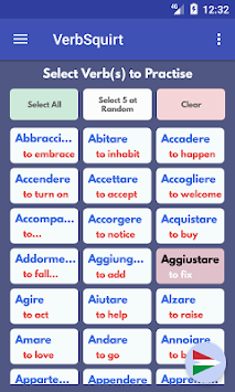 VerbSquirt Italian Verbs Poster